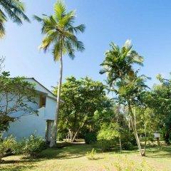 Отель Palm Beach Inn and Sea Shells Cabanas Шри-Ланка, Бентота - отзывы, цены и фото номеров - забронировать отель Palm Beach Inn and Sea Shells Cabanas онлайн