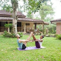 Отель Plantation Villa Ayurveda Yoga Resort фитнесс-зал