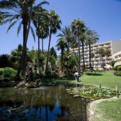 Отель Royal Al-Andalus фото 3