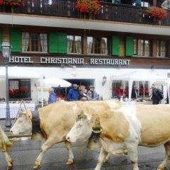 Hotel Christiania Gstaad фото 9