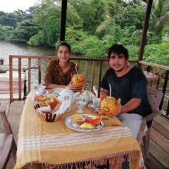 Отель Mahi Villa Шри-Ланка, Бентота - отзывы, цены и фото номеров - забронировать отель Mahi Villa онлайн питание фото 2