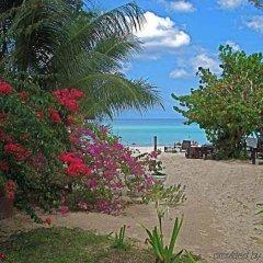 Отель Firefly Beach Cottages пляж