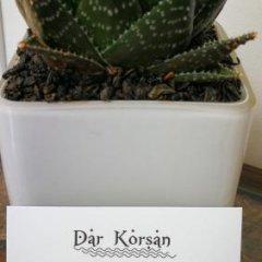 Отель Dar Korsan Марокко, Рабат - отзывы, цены и фото номеров - забронировать отель Dar Korsan онлайн городской автобус
