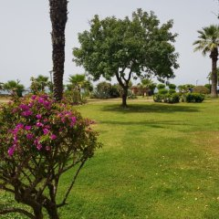 Wasa Hotel Турция, Аланья - 8 отзывов об отеле, цены и фото номеров - забронировать отель Wasa Hotel онлайн