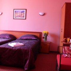 Отель Family Hotel Balkana Болгария, Боженци - отзывы, цены и фото номеров - забронировать отель Family Hotel Balkana онлайн комната для гостей фото 3