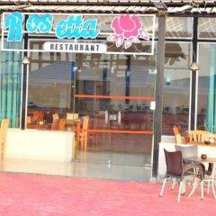 Отель Bella Rose Nefertiti Египет, Хургада - отзывы, цены и фото номеров - забронировать отель Bella Rose Nefertiti онлайн фото 3