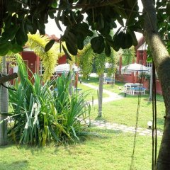 Отель Pictory Garden Resort детские мероприятия