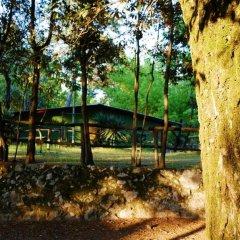 Отель Camping Al Bosco Италия, Градо - отзывы, цены и фото номеров - забронировать отель Camping Al Bosco онлайн фото 2