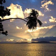 Отель Garden Island Resort Фиджи, Остров Тавеуни - отзывы, цены и фото номеров - забронировать отель Garden Island Resort онлайн пляж фото 2