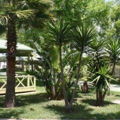Отель Camping-Bungalows El Faro Испания, Кониль-де-ла-Фронтера - отзывы, цены и фото номеров - забронировать отель Camping-Bungalows El Faro онлайн фото 3