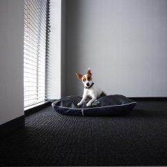 Alt Hotel Winnipeg с домашними животными