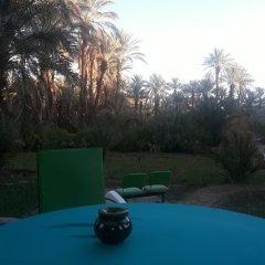 Отель Riad Tagmadart Ferme D'hôte Марокко, Загора - отзывы, цены и фото номеров - забронировать отель Riad Tagmadart Ferme D'hôte онлайн бассейн
