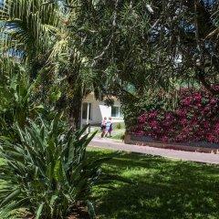 Отель Dorisol Estrelicia Португалия, Фуншал - 1 отзыв об отеле, цены и фото номеров - забронировать отель Dorisol Estrelicia онлайн фото 6