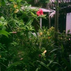 Отель Caribbean Coral Inn Tela Гондурас, Тела - отзывы, цены и фото номеров - забронировать отель Caribbean Coral Inn Tela онлайн фото 9