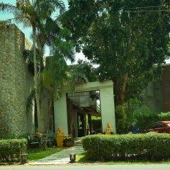 Отель Tea Tree Boutique Resort фото 2