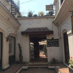 Отель 3 Rooms by Pauline Непал, Катманду - отзывы, цены и фото номеров - забронировать отель 3 Rooms by Pauline онлайн фото 5