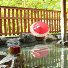 Отель Kinugawa Gyoen Япония, Никко - отзывы, цены и фото номеров - забронировать отель Kinugawa Gyoen онлайн