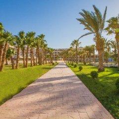 Отель Golden 5 Paradise Resort Египет, Хургада - отзывы, цены и фото номеров - забронировать отель Golden 5 Paradise Resort онлайн фото 2