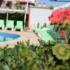 Отель Eden Болгария, Свети Влас - отзывы, цены и фото номеров - забронировать отель Eden онлайн бассейн
