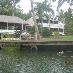 Отель Golden Palms Retreat Фиджи, Вити-Леву - отзывы, цены и фото номеров - забронировать отель Golden Palms Retreat онлайн приотельная территория фото 2