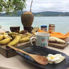 Отель Colonial Lodge Фиджи, Вити-Леву - отзывы, цены и фото номеров - забронировать отель Colonial Lodge онлайн приотельная территория фото 2