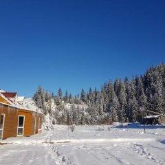 Гостиница Dream Forest Украина, Волосянка - отзывы, цены и фото номеров - забронировать гостиницу Dream Forest онлайн спортивное сооружение