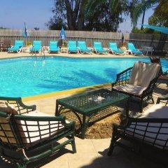 Отель Mirabelle Hotel Греция, Аргасио - отзывы, цены и фото номеров - забронировать отель Mirabelle Hotel онлайн бассейн фото 2