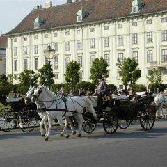 Hotel Alpha Wien спортивное сооружение