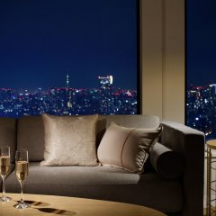 Keio Plaza Hotel Tokyo Premier Grand Токио балкон