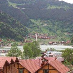 My Home Uzungol Турция, Узунгёль - отзывы, цены и фото номеров - забронировать отель My Home Uzungol онлайн фото 2