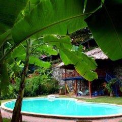 Отель Banana and Rose Homestay бассейн