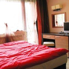 Отель Alexander Hotel Болгария, Банско - 1 отзыв об отеле, цены и фото номеров - забронировать отель Alexander Hotel онлайн удобства в номере фото 2