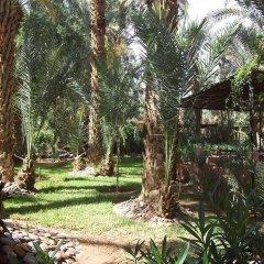 Отель Riad Marrat Марокко, Загора - отзывы, цены и фото номеров - забронировать отель Riad Marrat онлайн фото 3
