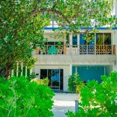 Отель Seven Corals фото 5