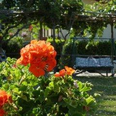 Отель Divina Costiera Аджерола фото 6