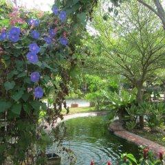 Отель Cowboy Farm Resort Pattaya фото 8