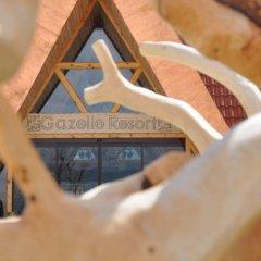 Gazelle Resort & Spa Турция, Болу - отзывы, цены и фото номеров - забронировать отель Gazelle Resort & Spa онлайн в номере фото 2