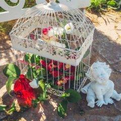 Гостиница Golf Hotel Sorochany в Курово отзывы, цены и фото номеров - забронировать гостиницу Golf Hotel Sorochany онлайн фото 10