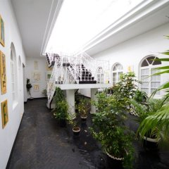 Отель Jamaica Palace Порт Антонио фото 3