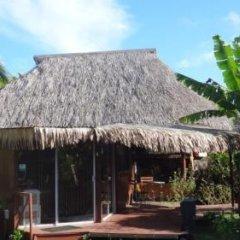 Отель Moorea Fare Miti Французская Полинезия, Муреа - отзывы, цены и фото номеров - забронировать отель Moorea Fare Miti онлайн гостиничный бар