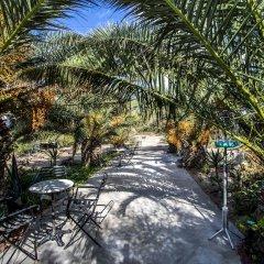 Отель Ecoxenia Studios Греция, Остров Санторини - отзывы, цены и фото номеров - забронировать отель Ecoxenia Studios онлайн приотельная территория фото 2