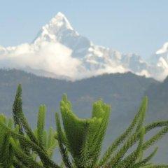 Отель View Point Непал, Покхара - отзывы, цены и фото номеров - забронировать отель View Point онлайн фото 4