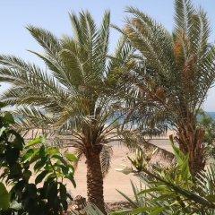 Darna Village Beach Hostel пляж фото 2