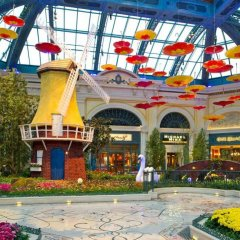 Отель Bellagio США, Лас-Вегас - - забронировать отель Bellagio, цены и фото номеров бассейн фото 2