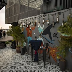 Acoustic Hotel & Spa гостиничный бар