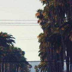 Loews Hollywood Hotel пляж фото 2