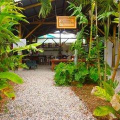 Отель Cabinas Tropicales Puerto Jimenez Ринкон фото 14