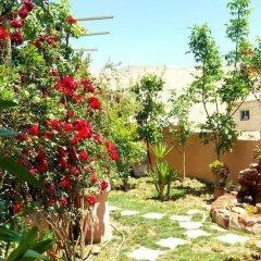 Отель Why not bedouin house Иордания, Вади-Муса - отзывы, цены и фото номеров - забронировать отель Why not bedouin house онлайн фото 9