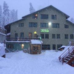 Отель Forest Star Hotel Болгария, Боровец - отзывы, цены и фото номеров - забронировать отель Forest Star Hotel онлайн фото 10