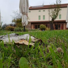 Отель Locanda Veneta Италия, Виченца - отзывы, цены и фото номеров - забронировать отель Locanda Veneta онлайн фото 5
